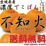 愛媛県産 不知火 「デコポン」5K (家庭用)