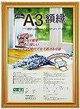 ナカバヤシ 賞状額縁 金ケシ(樹脂製) JIS A3判 フ-KWP-40 N