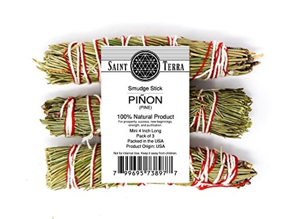 司令官カナダジュースSaint Terra Pack of 3 Pinon Pine smudge stick ( 4インチ)の新しいBeginnings、強度、繁栄、成功、浄化。