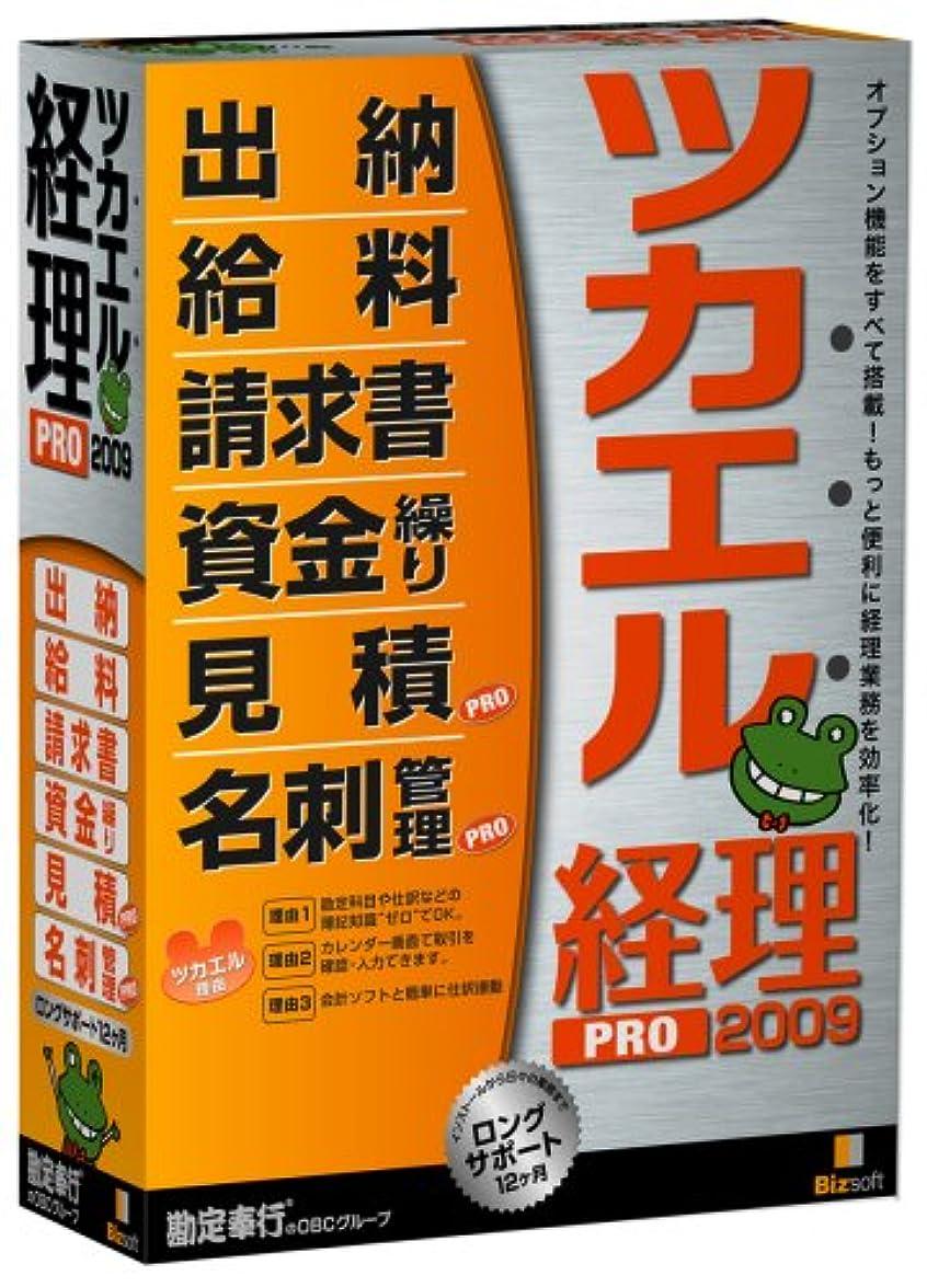 恐竜レンダリング大惨事ツカエル経理 PRO 2009