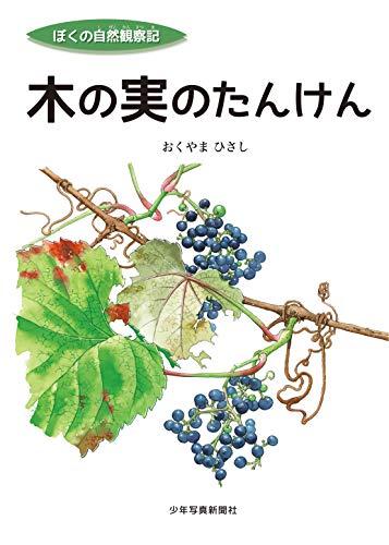 木の実のたんけん (ぼくの自然観察記)