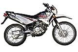ヤマハ(Yamaha) XTZ125 ホワイト SOX24ヶ月保証 乗り出し価格 [並行輸入品]
