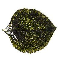 コスタノバ (COSTA NOVA) リヴィエラ RIVIERA アルケミル リーフ 22cm フォレ [並行輸入品]