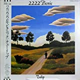 """2222年ピクニック 2222 Picnic   [12"""" Analog LP Record]"""