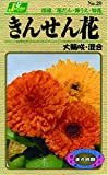 カネコ種苗 草花タネ020 きんせん花 混合 10袋セット