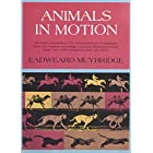 Animals in Motion (Dover Anatomy for Artists)