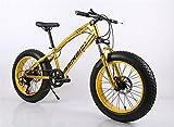 26インチ ファットバイク 自転車 変速21速 悪路 雪道 ビーチ 極太タイヤ サイクリング BMX マウンテン バイク (ゴルード)