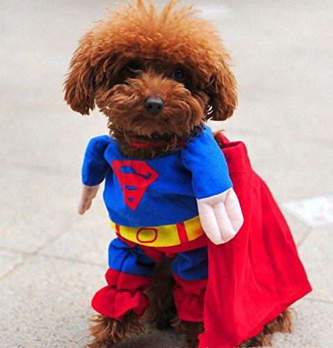 【ペット服/ペット用】スーパーマンスコスチューム 犬服 前掛けタイプ 小型犬向け L(首囲約28-33cm/着丈約30cm)