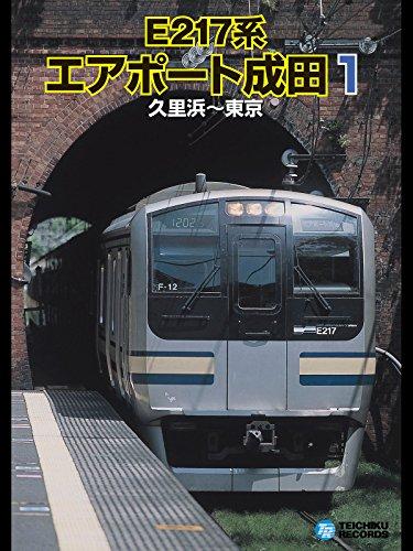 【運転室展望】E217系エアポート成田1(久里浜~東京)