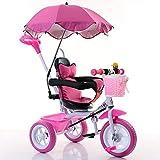 子供の三輪車 子供の三輪車のペダルの赤ん坊のベビーカーの赤ん坊のカート子供の自転車2-3-5歳のおもちゃとオーニング 三輪車 おりたたみ 持ち運び (色 : D)