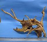 天然枝流木(アク抜き処理済) A02