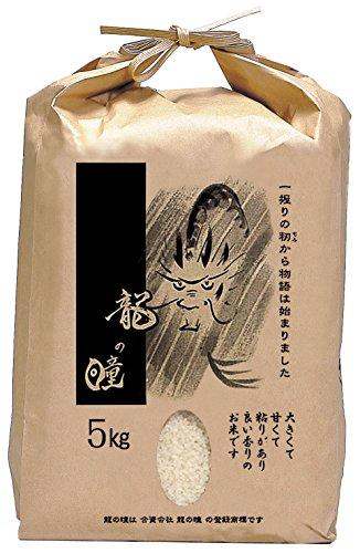 【精米】岐阜県産 龍の瞳 5kg 令和元年産