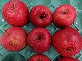 28年度青森県産りんご 訳ありサンふじバラ詰め 加工用10kg