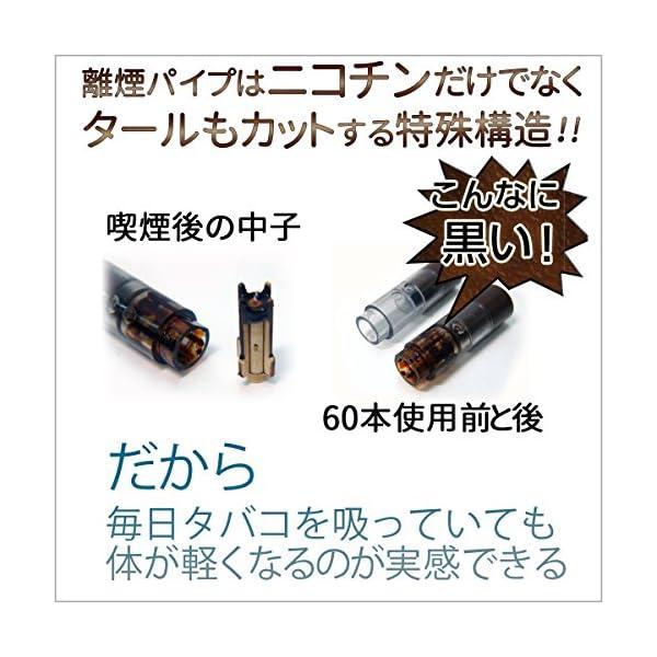 離煙パイプGR 31本セット 禁煙グッズ レギ...の紹介画像9