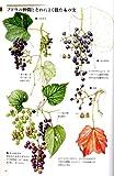 野の花さんぽ図鑑―木の実と紅葉 画像