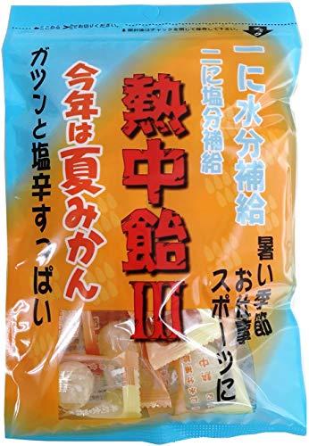 井関食品 熱中飴�V夏みかん 100g ×10袋