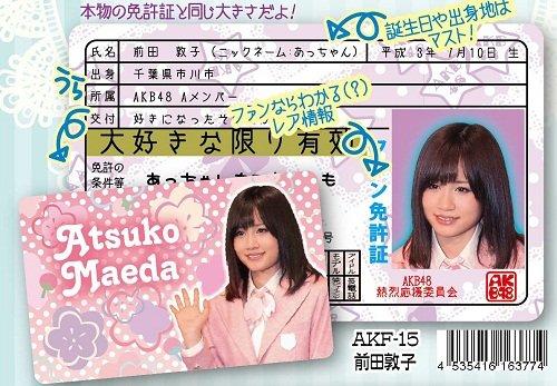 AKB48ファン免許証 第3弾 前田敦子 [おもちゃ&ホビー]