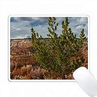 アメリカ、ユタ州、ブライスキャニオンNP。 Sunrise PointにあるLimber Pine PC Mouse Pad パソコン マウスパッド