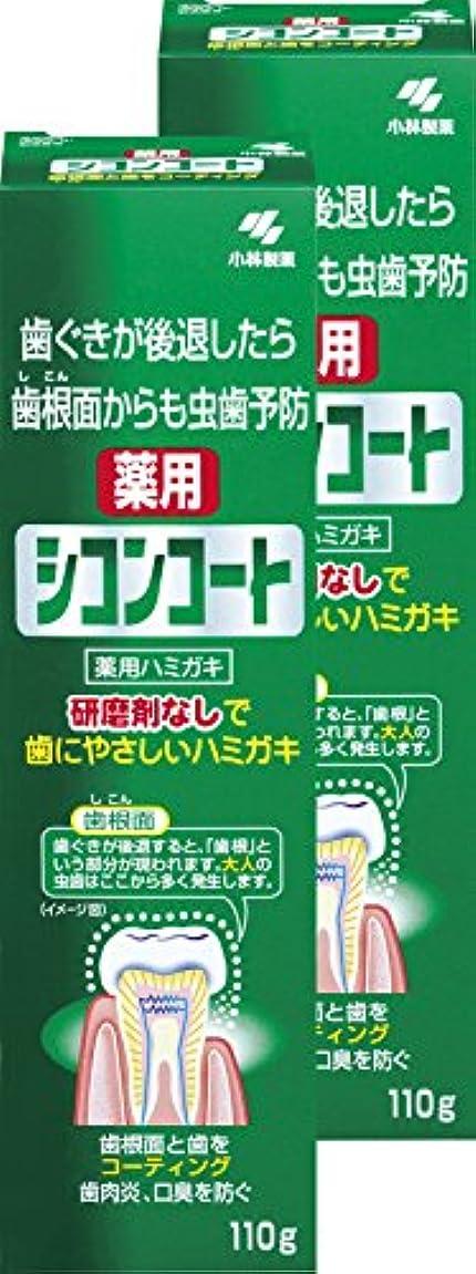 シンボル待つどれか【まとめ買い】シコンコート 虫歯予防 研磨剤無しで歯にやさしい 薬用ハミガキ ミントの香り 110g×2個