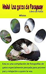 Hola! Los gatos de Paraguay (Makoto Hirata Photos nº 4) (Spanish Edition)