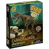 恐竜発掘セット カルノタウルス