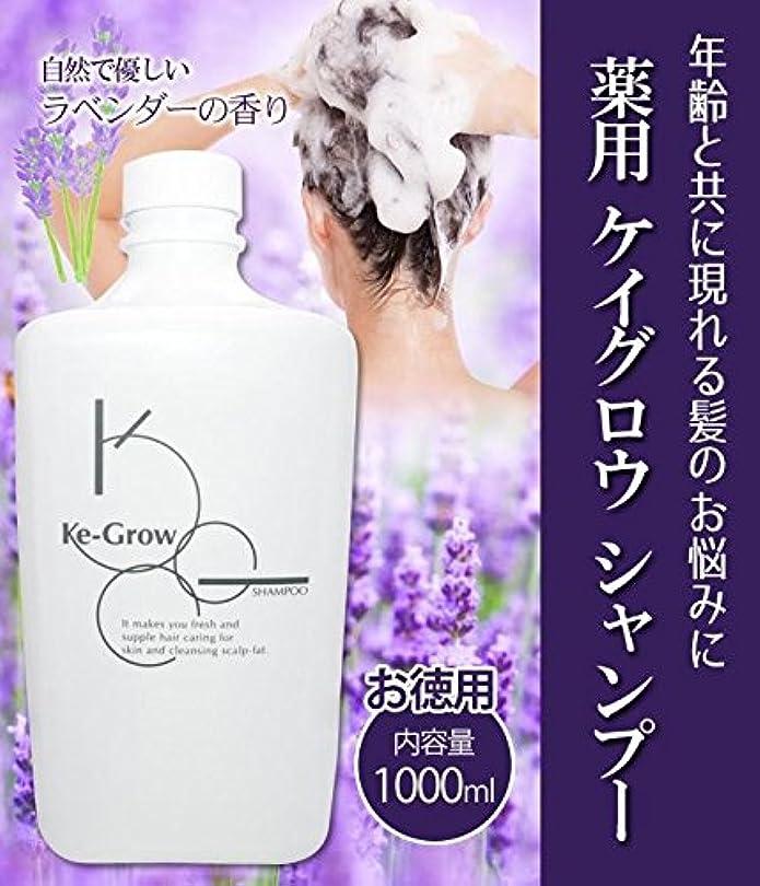 迷彩コンプライアンス公演薬用 ケイグロウ シャンプー お徳用 1000ml(詰替用)