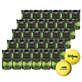 Wilson(ウイルソン)US Open Extra Duty(USオープンエクストラデューティ) 30缶60球テニスボール