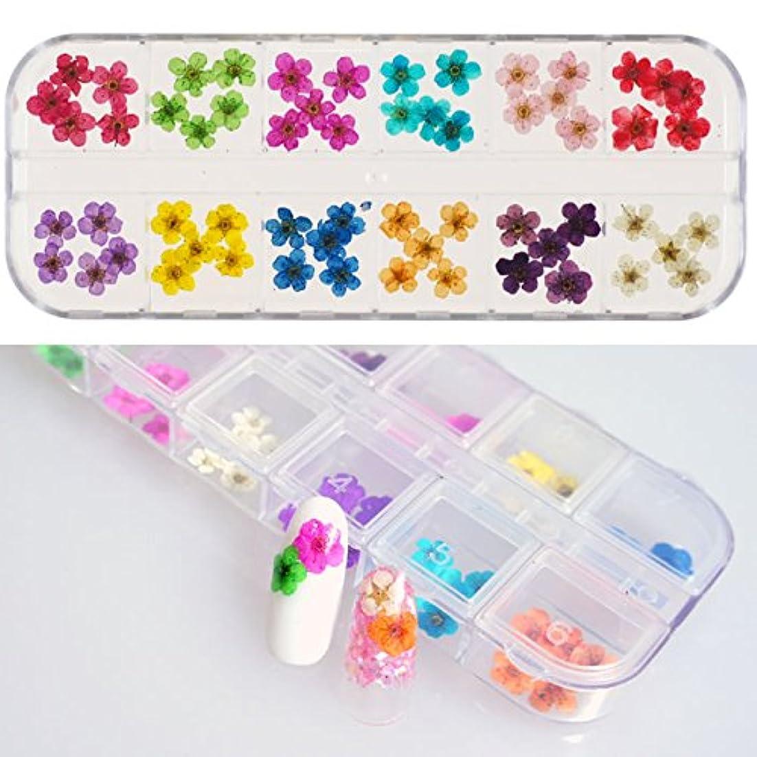 コードレス文化機械的にネイルサイズの小さい花だけ 本物の押し花60枚セットケース入リアルドライフラワー ジェルネイルに埋め込み