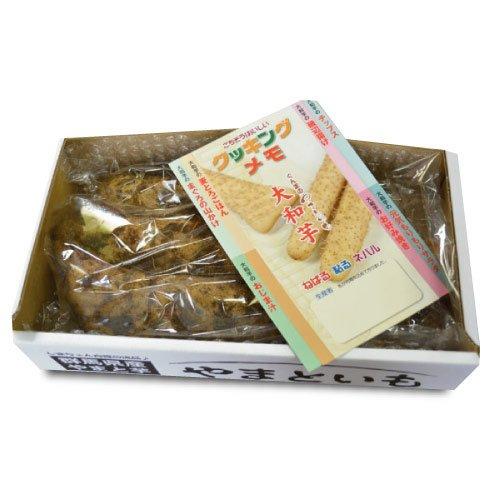 【島田ファーム産 やまといも 1kg詰め BOX】クッキングレシピ付き♪ 群馬県産 大和芋