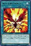 遊戯王 転生炎獣の超転生 ( レア ) カオス・インパクト ( CHIM )   サラマングレイト・トランセンド 速攻魔法 レア