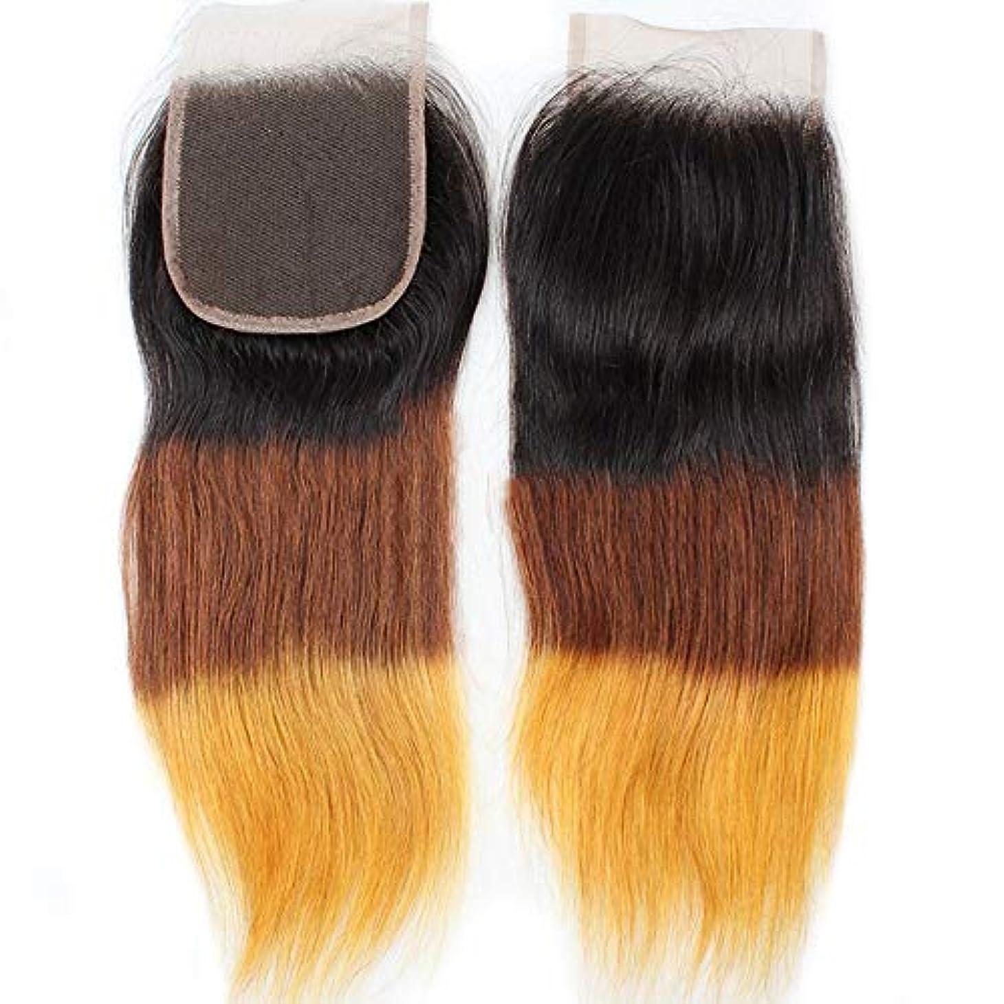 起こりやすい浸食レジデンスHOHYLLYA 4×4レース前頭閉鎖無料部分耳から耳9Aブラジルストレートヘアグラデーションカラー人間の髪の毛の合成髪レースかつらロールプレイングウィッグロングとショートの女性自然 (色 : ブラウン, サイズ : 10...