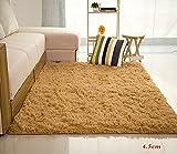 「Prolife」ラグ カーペット 絨毯 三層構造 防音 滑り止め付き 抗菌防臭 床保護 床暖房対応 洗える 120*160cm モカ