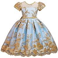 OBEEII Girls Princess Dress Short Sleeve Flower Embroidered Tutu Dress