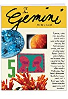 Gemini誕生日ジョークカード 1 Jumbo Birthday Card & Enve. (J9444)