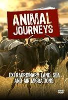 Animal Journeys [DVD] [Import]