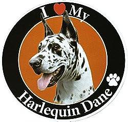 Great Dane サークルマグネットステッカー:グレートデーン(ハルクイン) 画像イラスト入り 英語犬種名 Designed in the U.S.A [並行輸入品]
