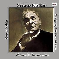 マーラー : 大地の歌 | モーツァルト : 交響曲 第40番 (Gustav Mahler | Wolfgang Amadeus Mozart / Bruno Walter | Wiener Philharmoniker) [2CD] [日本語帯・解説・歌詞対訳付]