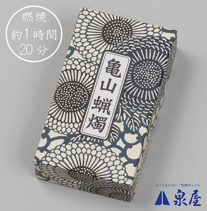 とても禁輸食事カメヤマ大ローソク 2号A#203 225g
