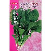 漬け菜 種 大和真菜 小袋(約1dl)