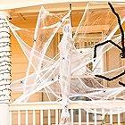 蜘蛛の巣 オリジナル ハロウィン 装飾飾り デコレーション 衣装仮装 スパイダーウェブハロウィーン 小道具 恐ろしい パーティー 装飾 不気味 蜘蛛の巣 お化け屋敷スパイダーウェブ100g クモフィギュア10個付