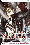 Angel Sanctuary, Vol. 17
