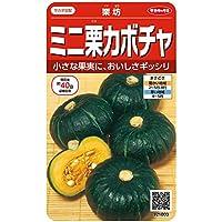 サカタのタネ 実咲野菜1003 ミニ栗カボチャ 栗坊 00921003 10袋セット