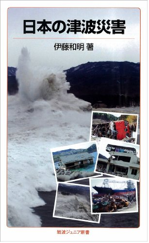 日本の津波災害 (岩波ジュニア新書)