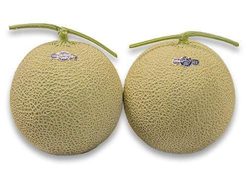 フルーツなかやま 静岡産 高級マスクメロン【クラウン】2個入 糖度11度以上