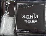anela アネラ マナソープ(泡立てネット付き) 100g ×10個セット