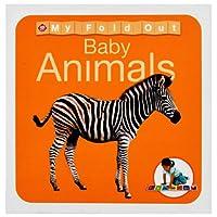 Animals. (Wipe Clean Activity Flashcards)