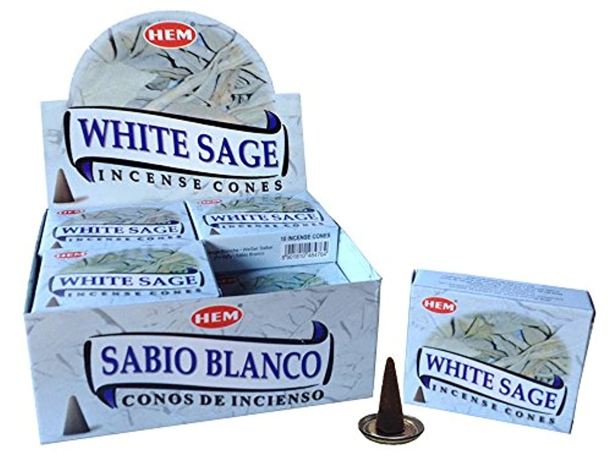 ボトルネックメタルラインガムHEM ホワイトセージ コーン 12個セット