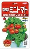 【種子】トマト レジナ 0.6ml