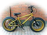 20inchBRONX-DD 【ブロンクス 20inch 変速付きミニベロファットバイク】 COLOR:ゴールド×ゴールドリム