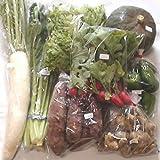 【産地直送】自然栽培 元氣野菜セットM(農薬・肥料不使用/約6~9品目)